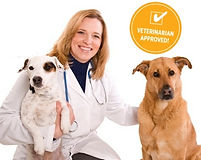 VeterinarianApproved001.jpg