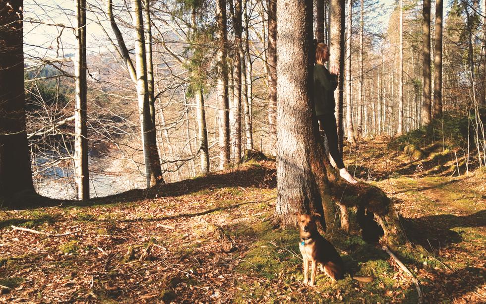 Yoga_Meditation_Murnau5.jpg