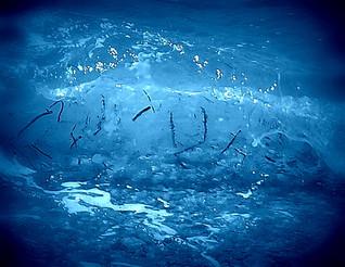 """""""o scriere pe apă"""""""