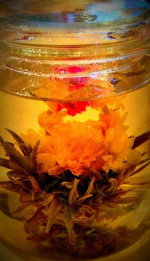 dancing dragon, flowering tea