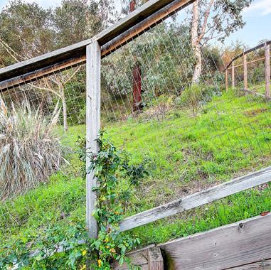 25_313 Portofino Wy--037.jpg