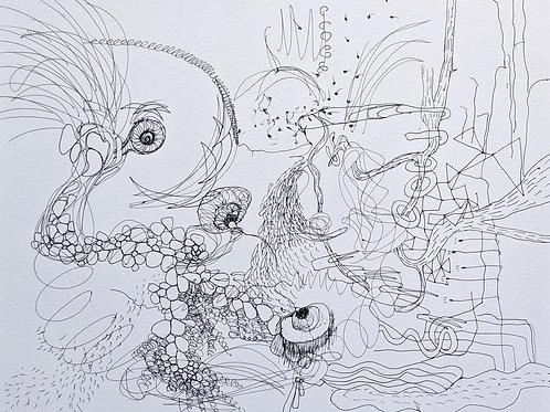 Drawing Chaos 1