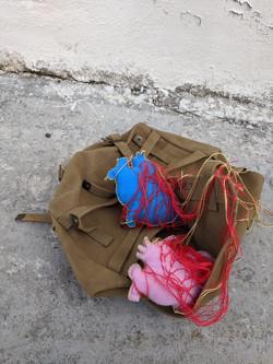 Hears in military bag
