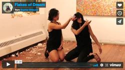 flake of dream performance