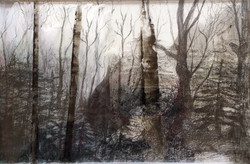 """""""Experiment in Landscape"""""""