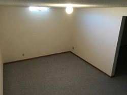 Basement Bonus Room
