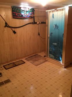 Basement laundry & shower