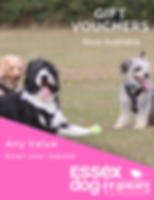 Essex Dog Training_Gift Vouchers.png