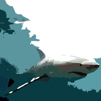 Great White Shark -  Shark Acrylic pop art style painting