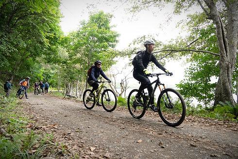 湖畔を駈ける自転車