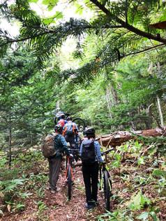 森の中を自転車を押して歩く