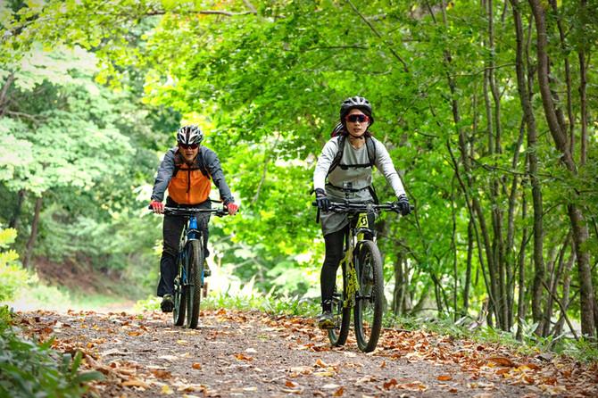 森を駈ける自転車