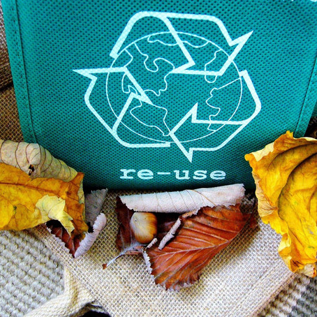 3 EASY PEAZY ECO-FRIENDLY HABITS FOR HOME