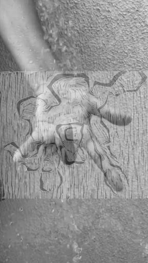 Frame de Vídeo Digital