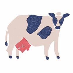 【北海道】牛