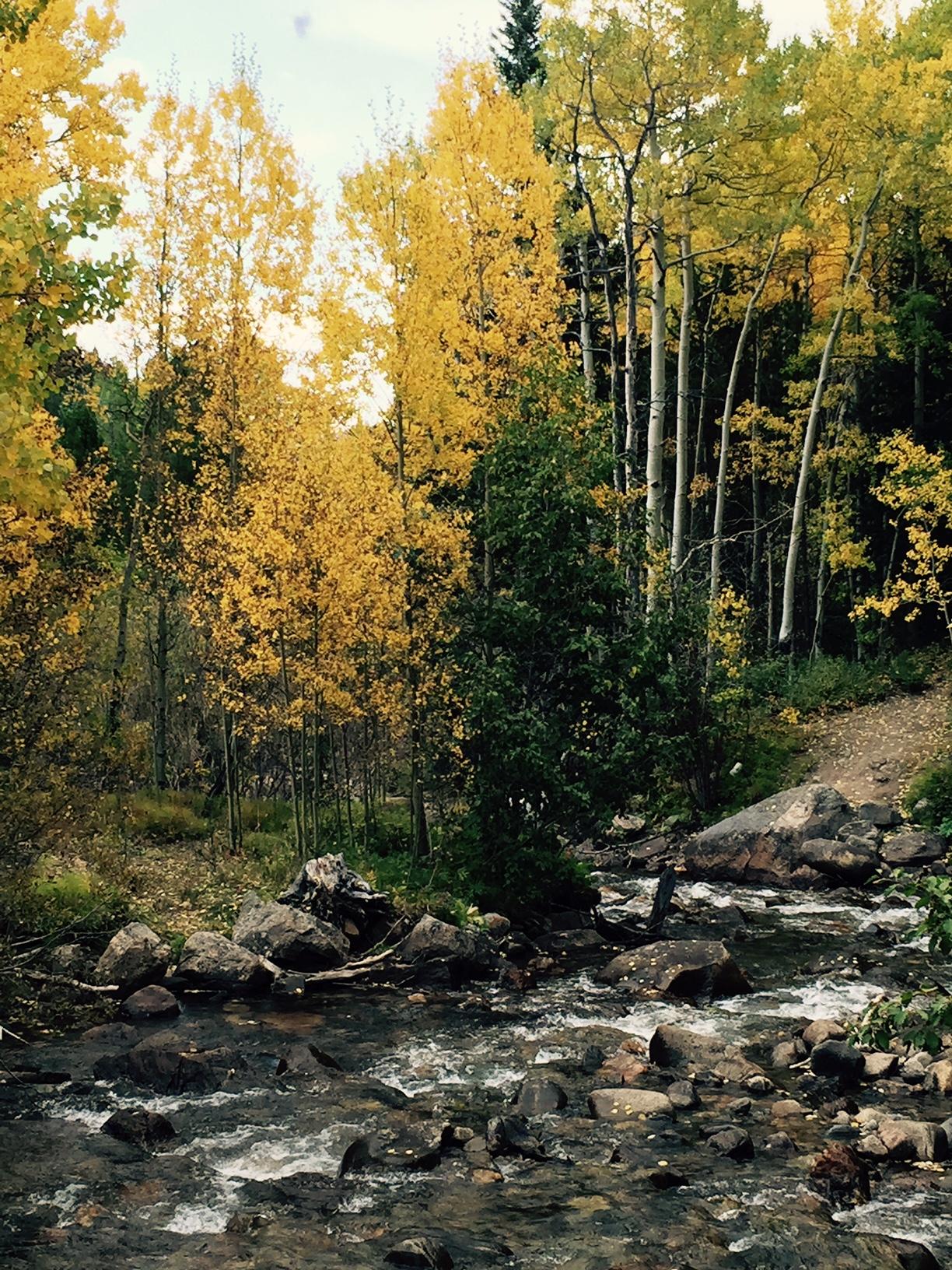 Silverdale Trail