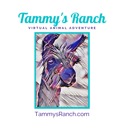 Tammy's Ranch.4 Logo.png