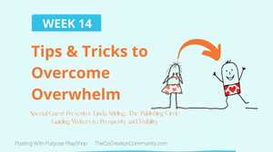 Boomer Zoomer MeetUp #14 ~ Tips and Tricks to Overcome Overwhelm