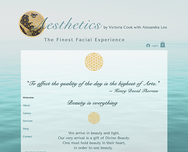 Aesthetics Home Page.png