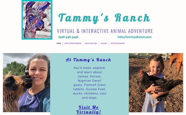 Tammy's Ranch Home Page.png