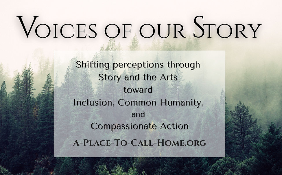 Voices of Our Story Slide.jpg