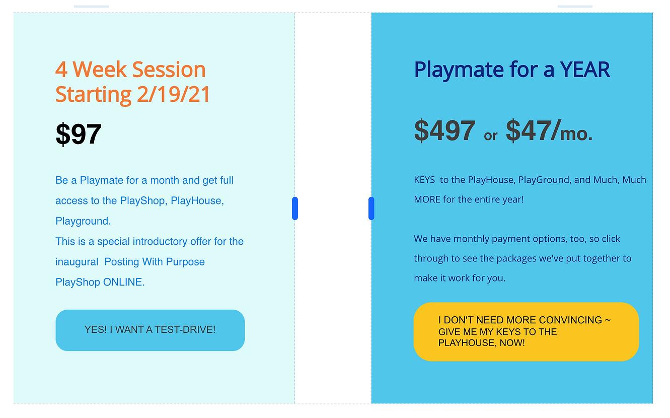 PlayShop Membership Options.png