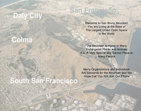 SAN BRUNO MTN. COVER.png