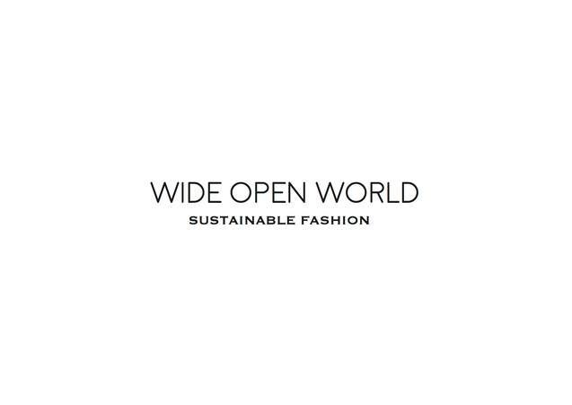 Wide Open World 1.jpg