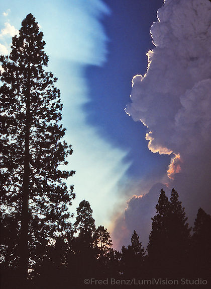 A forest firecloud rises above Foresta in California's Yosemite National Park