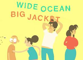 REVIEW: Wide Ocean Big Jacket - Nintendo Switch