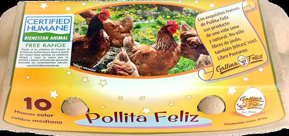 ESTUCHE DE 10 HUEVOS POLLITA FELIZ