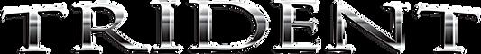 TAC Logo Silver.png