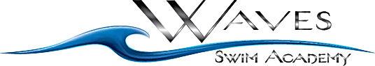 WSA logo 3D small.jpg