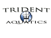New Trident Logo.png
