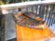 Grilled Beaver Tail.jpg