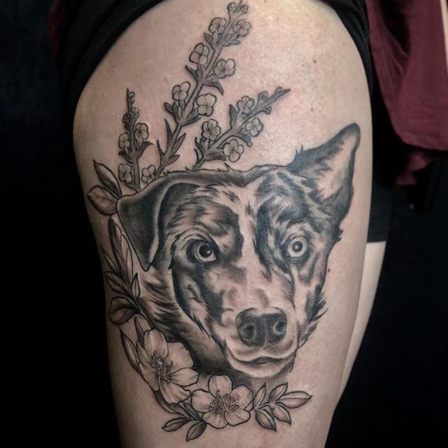 Doggo I finished up yesterday 🐶. . . .