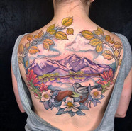 Finished up this Colorado themed back pi