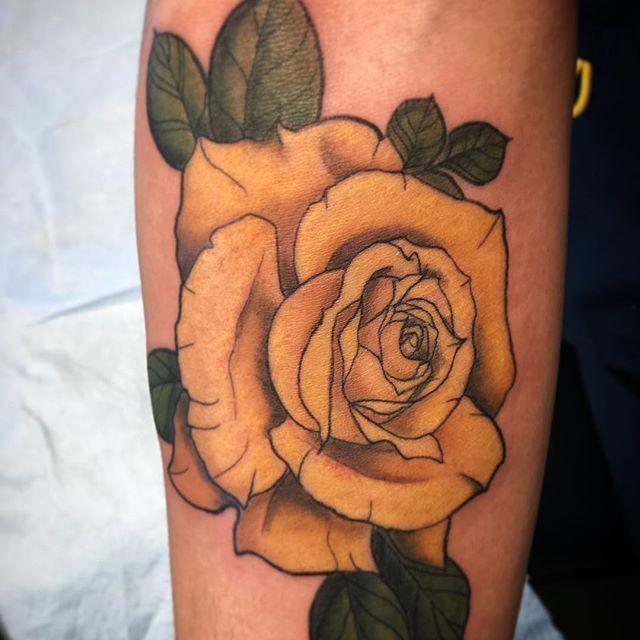 Rose from yesterday 💛._._._.jpg