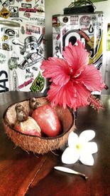 Hibiscus und Cashew
