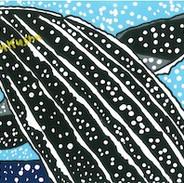 クジラがざぶんしているところ