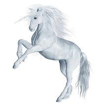 fantasy-unicorn-4-13270767.jpg