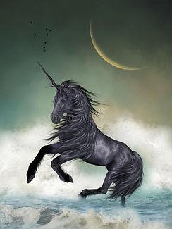 unicorn-ocean-big-moon-41343507.jpg
