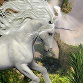 unicorn-yucca-plant-beautiful-white-pran