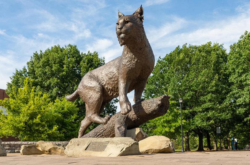 wildcat statue2_0.jpg