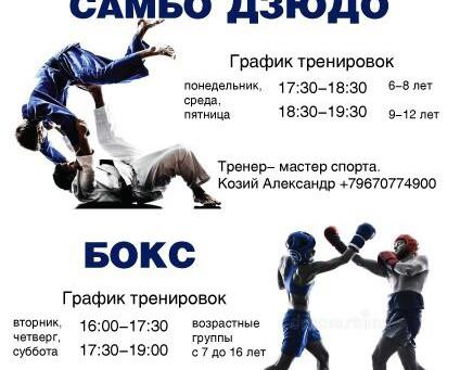 Секции «Самбо,Дзюдо» и «Бокс»