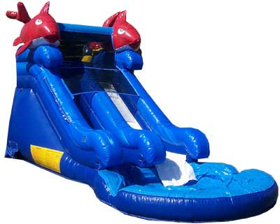 Mini Kahuna Water Slide Pool