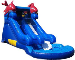 Mini Kahuna Water Slide Pool