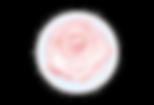 logo clear.tif