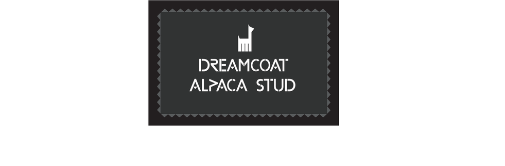 Dreamcoat logo on white 2.png