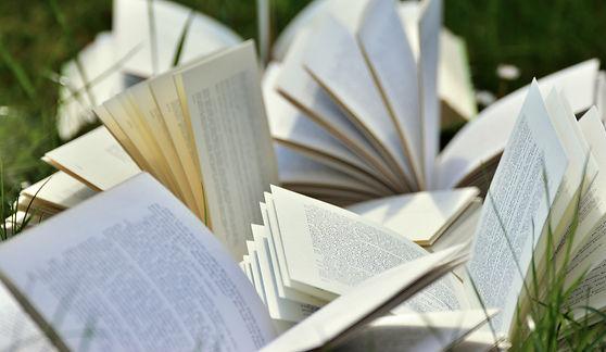 books-2241635_1920.jpg